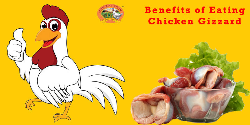 Chick N Chilly Benefits Of Eating Chicken Gizzard